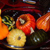 "October, 2014<br /> <br /> ""NATURE'S FALL COLOR PALETTE"" Theme<br /> (Centerpiece of Attention)<br /> <br /> Peggy Pardo says, ""The fall season makes the world alive with beautiful, rich colors. Nature's color palette during this season is striking with tones of red, orange, gold and brown. From the changing leaves to the hot chocolate we sip while sitting by a glowing fire, it's hard not to be inspired by its natural beauty. Decor from these fall colors can create a warm, inviting atmosphere that hugs you the moment you step foot in it. They evoke feelings of home, family, and being one with nature.""<br /> <br /> (table decorated and photographed 9/20/2014)"