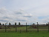 Endless rows of barracks or what remains of them at Auschwitz II Birkenau