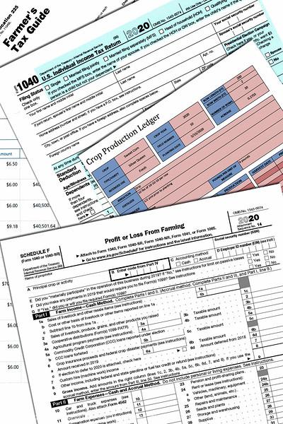 015-tax_forms-studio-22aug20-08x12-008-400-4702