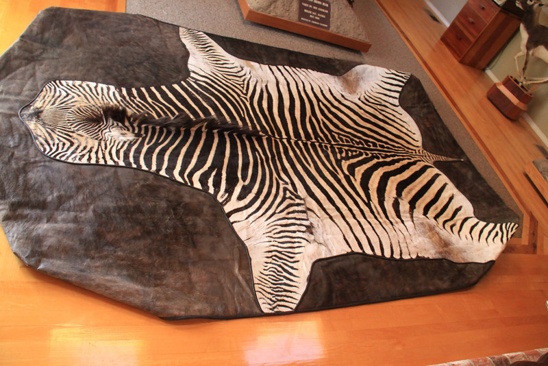 Zebra and Cape Buffalo Pool Table Cover Anderson Taxidermy & Guide Service, Inc.  www.THEHUNTPRO.com