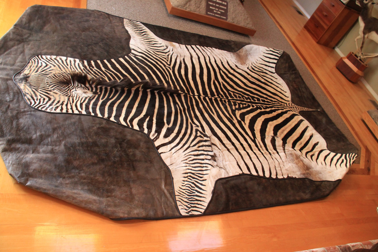 Zebra and Cape Buffalo Pool Table Cover