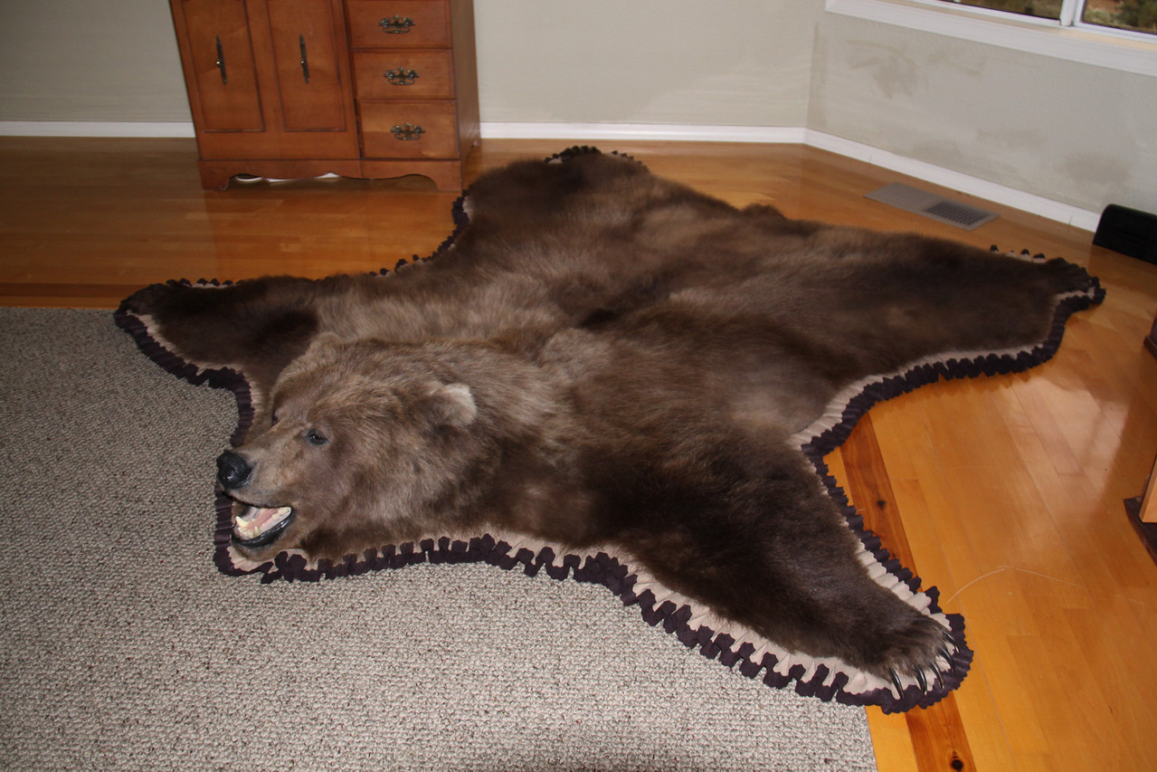 Brown Bear Rug, Pleated felt