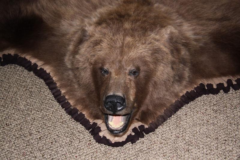 Brown Bear Rug, Pleated felt Anderson Taxidermy & Guide Service, Inc.  www.THEHUNTPRO.com