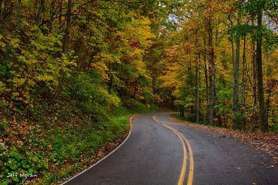Road to Burkes Garden