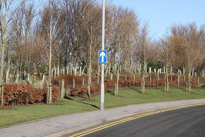 Claymore Drive as required One-Way circulation signage (should have been closed as it was operating normally as a two-way circulation)