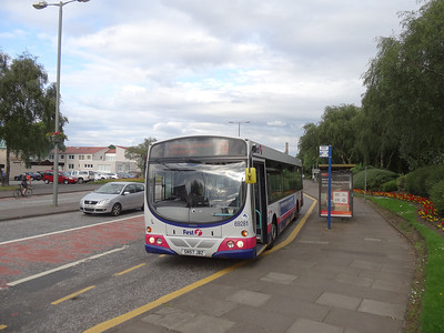 69281 Coppertop Camelon - early again!