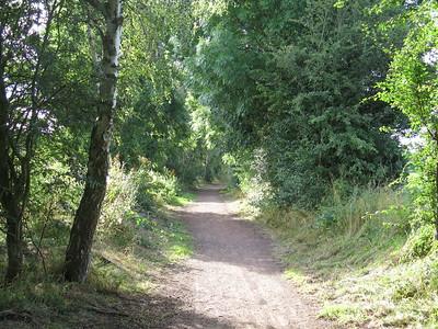 Towards Ormiston
