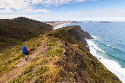 Female tramper (40's) walks Te Araroa trail at Cape Reinga. Cape Maria van Diemen in background