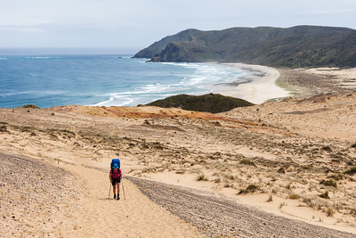 Female tramper (40's) walks Te Araroa Trail over Herangi Hill. Werahi Beach and Cape Reinga in background