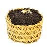 2007 Aged Anhui Dark Tea Basket, 250g-3