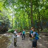 First-Year immersion at Letchworth State Park Service Learning performing invasive species removal and water stream sampling