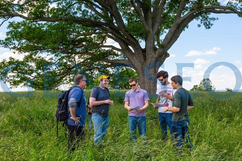 Summer Spring 2017 geography white oak research NSF grant