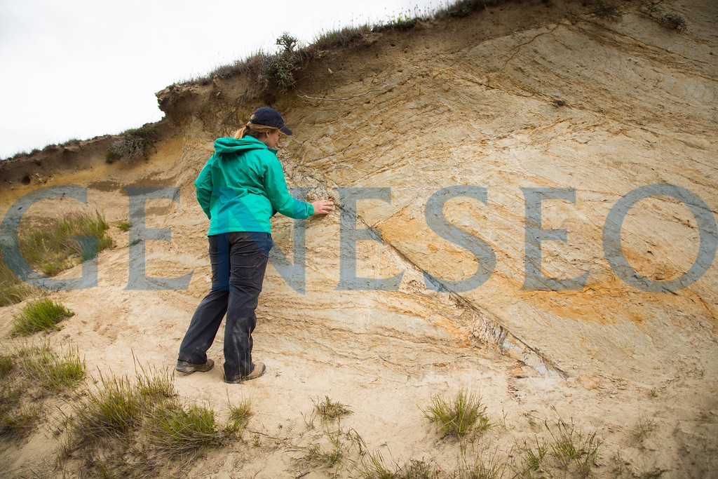 Geolog field studies group hikes to an outcrop and analyzes sand formation with fault line running through it.
