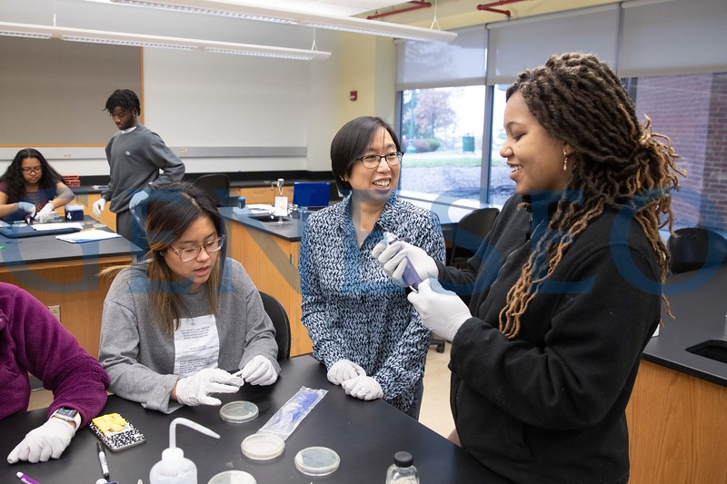 Biology Students experimenting with antibiotic resistance