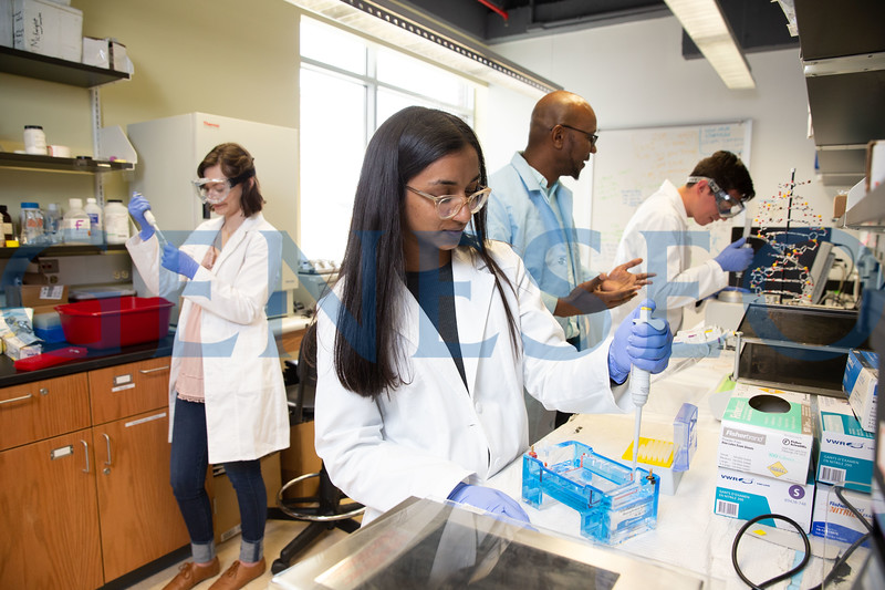 Christina Chacko (center) Annika Mounts (left) Ruel McKnight (right, blue lab coat) and Joe Kanlong (far right)