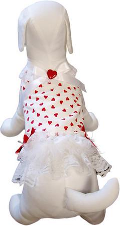 Harness Dog Dress  Description: My Valentine Item Number # CC My Valentine