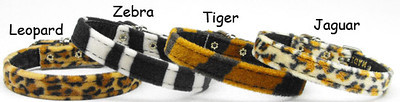 Teacup Dog Collars Toy Dog Collars