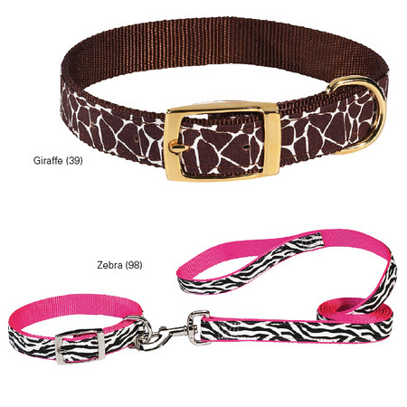 Animal Print Dog Collars (Pampered Pet)