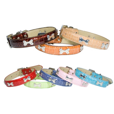 Fashionable Dog Collars