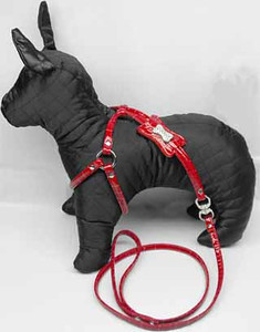 MRG Designer Dog Harness
