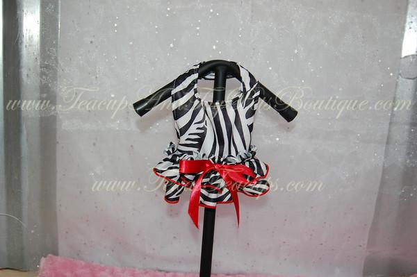 Sassy Zebra