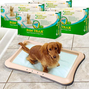 """PAW TRAX® . . . no more pet stains . . . no more pet odor…nor more surprises!  Set Includes:  PAW TRAX Doggy Pads (50 count Packs).  Pad Size: 17.7"""" x 23.6"""" (45 x 60cm    Richell's doggy pad is specifically designed to withstand lots of moisture, dry quickly, control odor and wetness, and protect floor surfaces.   The quality and durability of the doggy pad is due to the unique four-layer design that works together to make the pad SUPER absorbent:  The quilted pad surface dries quickly and is designed to keep liquid from spreading on contact.  The second layer consists of an absorbent sheet that blocks excess moisture and keeps it from seeping up to the pad surface.  The third layer includes an absorbent material that works as a gel to control nasty pet odor.  The final layer is a plastic sheet that works to protect floor surfaces from any kind of leakage.   While the pad is specially designed for use with the Paw Trax® Training Tray, it works great when used alone. It's snap-in design holds the PAW TRAX® doggy pad securely in place. The tray is perfect for potty training puppies and and longtime companion pets, and it comes in handy when your little pal is not feeling so special. It'll definitely keep your pet from trying to chew up the pad and provides additional floor protection from pet stains and odor! It's great for all indoor pets!"""