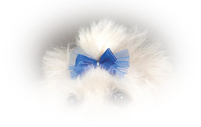 DT151 Pampered Pet Dog Bow
