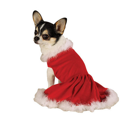 Ms.Claus Dog Dress US642
