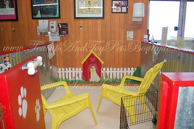 Puppy Playroom