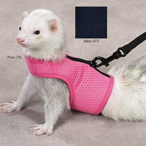 Clothes & harnesses tiny enough to fit a ferret