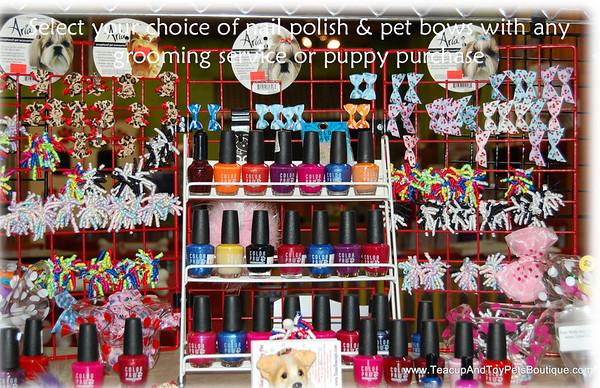 Photos of our Pet Boutique