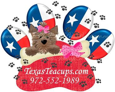 TexasTeacups Logo