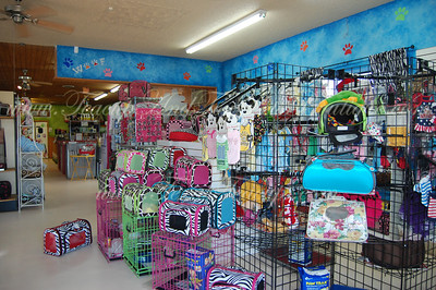 Teacup and Toy Pets Boutique