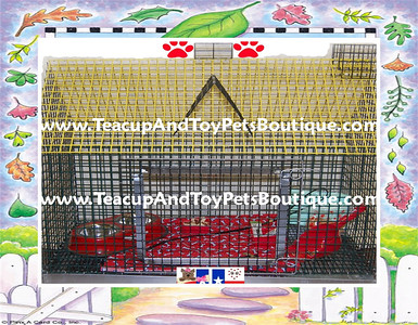 Click Here >( http://www.teacupandtoypetsboutique.com/Pet_Supply_Directory.html  )< To order this item or request additonal information.   Or Click Open Our Contact Information for phone number & e-mail address. >( http://www.texasteacups.com/Our_Contact_Information.html )