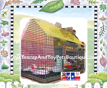 Deluxe Puppy Playhouse Training Crate. Available only at our Teacup And Toy Pets Boutique.  Measurments: Height: Inches  Width: Inches Depth: Inches  Click Here >( http://www.teacupandtoypetsboutique.com/Pet_Supply_Directory.html  )< To order this item or request additonal information.   Or Click Open Our Contact Information for phone number & e-mail address. >( http://www.texasteacups.com/Our_Contact_Information.html )