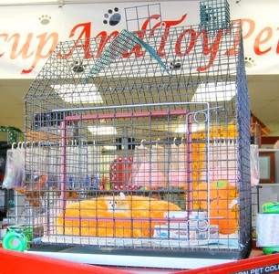Puppy Playhouse Training Crate. Available only at our Teacup And Toy Pets Boutique.  Measurments: Height: 36 inches  Width: 24 Inches Depth: 18 Inches  Click Here >( http://www.teacupandtoypetsboutique.com/Pet_Supply_Directory.html  )< To order this item or request additonal information.   Or Click Open Our Contact Information for phone number & e-mail address. >( http://www.texasteacups.com/Our_Contact_Information.html )
