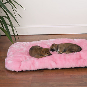 Luxury Pet Travel Pad