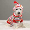 Dog Sweater  Item Number # ZW442