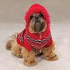 Dog Sweater <br /> Item Number # US622<br /> COLOR: Red