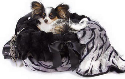11. Pet Supplies Teacup and Toy Pets Boutique