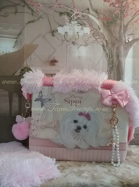 Luxury Pet Carriers
