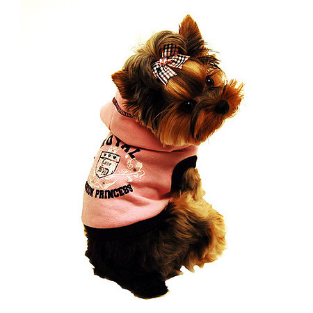 Available At Our Pet Boutique Walk In Location