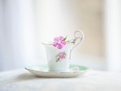 Wee little flower