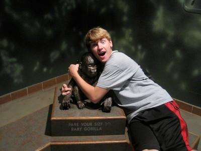 K  with gorilla