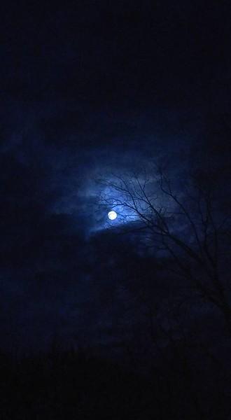 Aprils moon pic