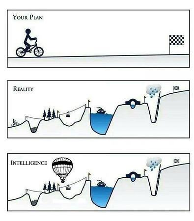 Plan vs  reality poster