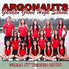 girls jv tennis 2015 poster