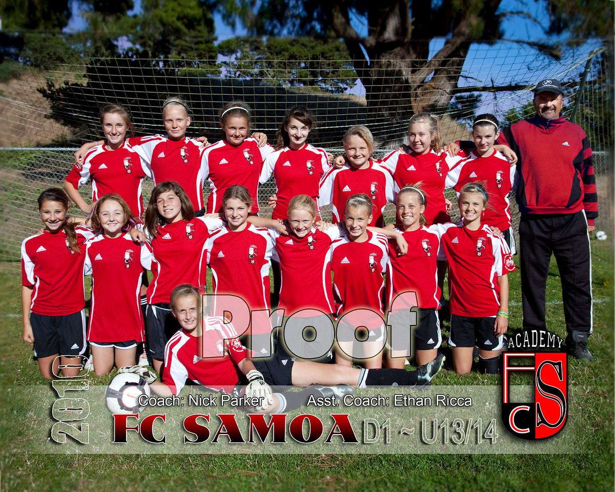 standard/traditional team photo