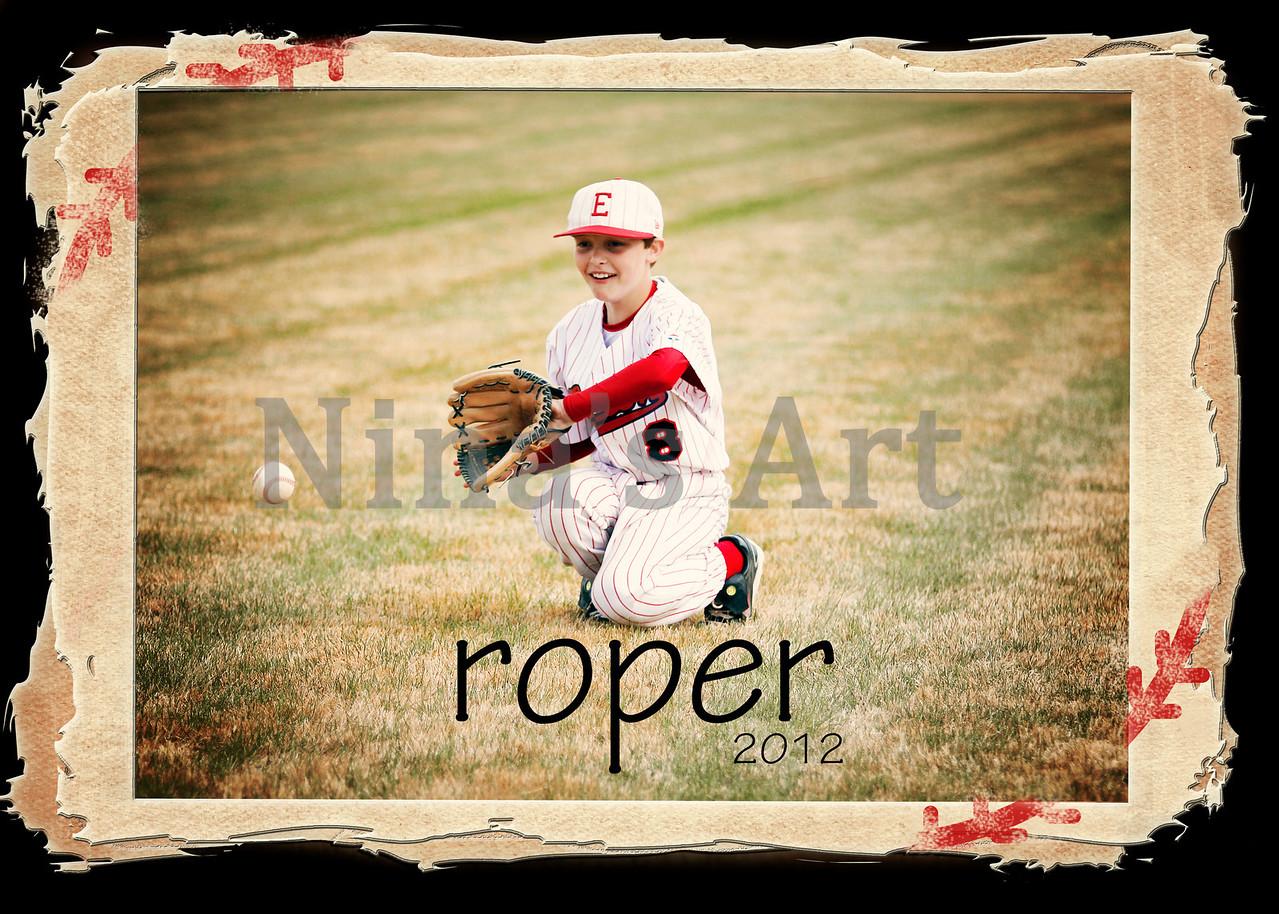 roper 2012