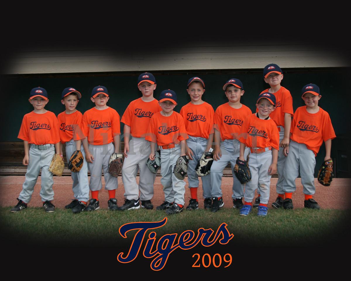 Tiger's team